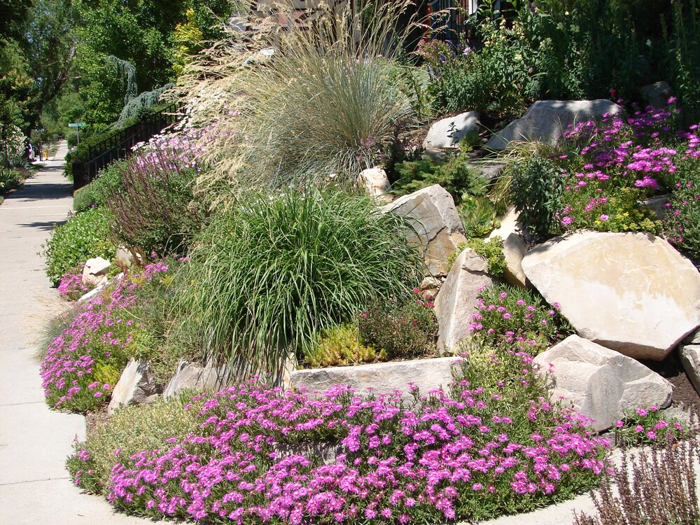 Xeriscaping for Backyard Landscape Designs Salt Lake City ... on Landscape Design Ideas  id=99906